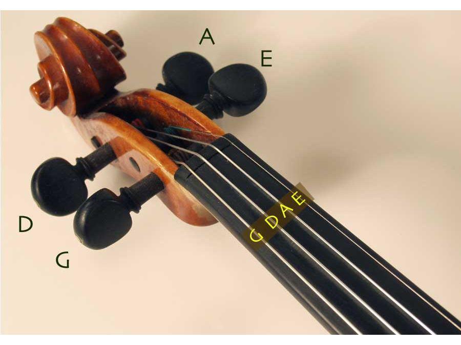 バイオリン ペグ