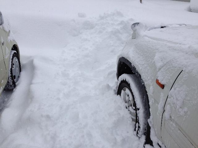 雪に埋もれる車