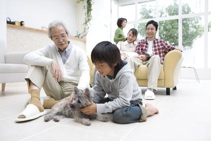 ペットと戯れる家族