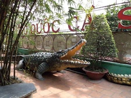 95 世界から注目されている仏教テーマパーク (1)