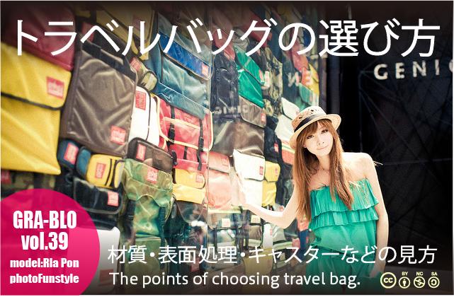 model_bag2