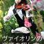 model_gakufu