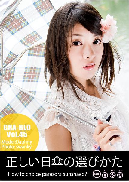model_higasa2