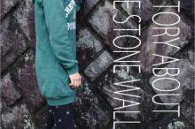 model_ishigaki