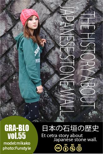 model_ishigaki2