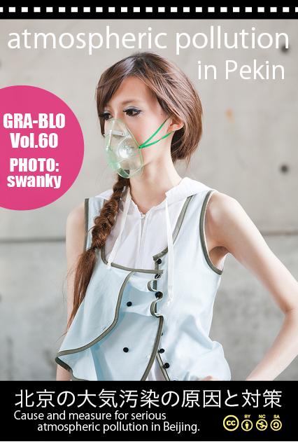 model_pekin2