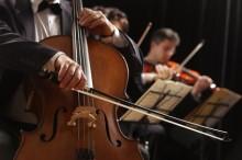 オーケストラでバイオリンを弾く人