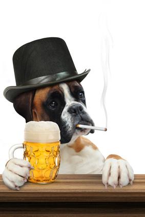 煙草をくわえてビールを持つ犬