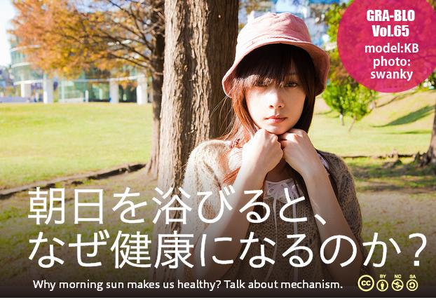 model_asahi2