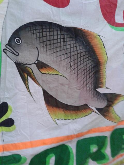 ウロコも書いてある魚の絵