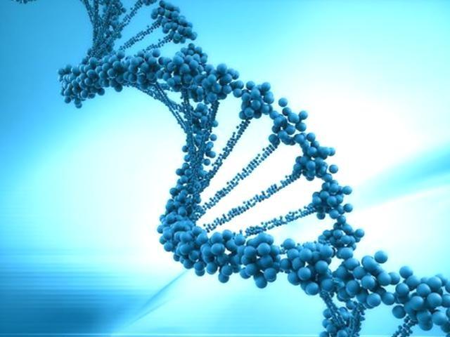 DNA立体画像
