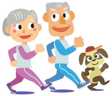 犬と老夫婦の散歩
