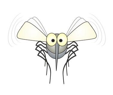 飛んでいる蚊